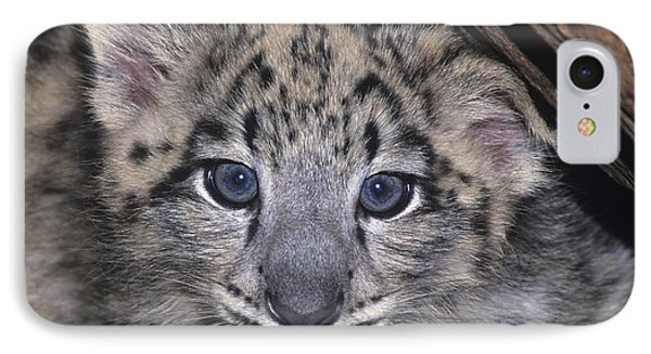 Snow Leopard Cub Endangered IPhone Case