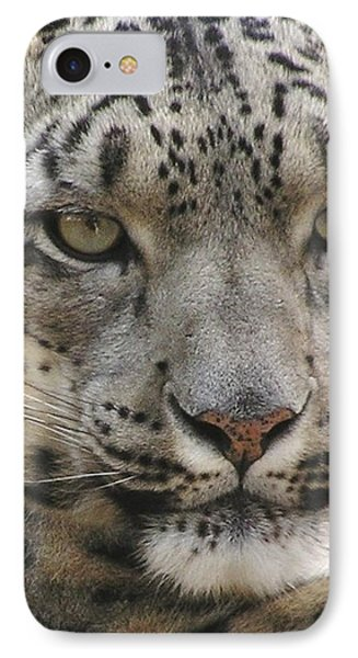 IPhone Case featuring the photograph Snow Leopard by Diane Alexander