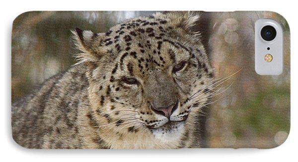 Snow Leopard IPhone Case by Ernie Echols