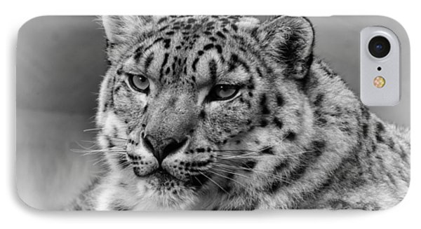 Snow Leopard Portrait IPhone Case by Chris Boulton