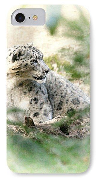 Snow Leopard Pose Phone Case by Karol Livote