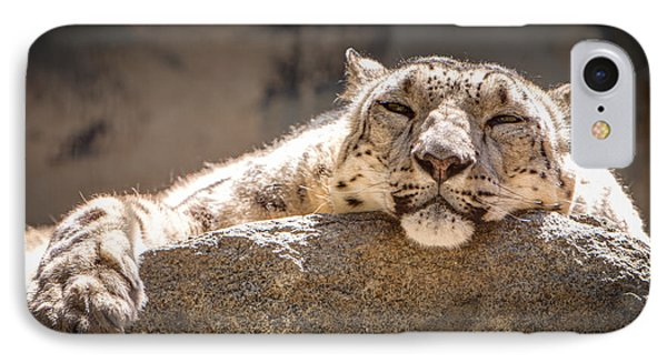 Snow Leopard Relaxing IPhone Case