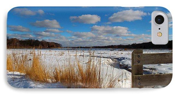 Snow Marsh IPhone Case by Dianne Cowen