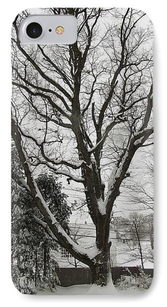 Snow Oak IPhone Case by John Wartman