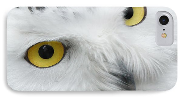 Snow Owl Eyes IPhone Case