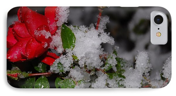 IPhone Case featuring the photograph Snow Rose by Mim White