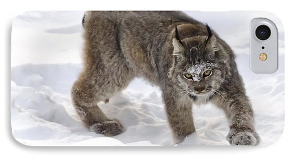 Snow-shovelling Lynx IPhone Case by Dee Cresswell