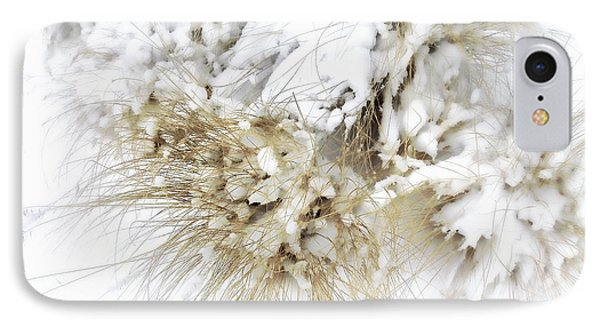 Snow Whiskers IPhone Case by Julie Palencia