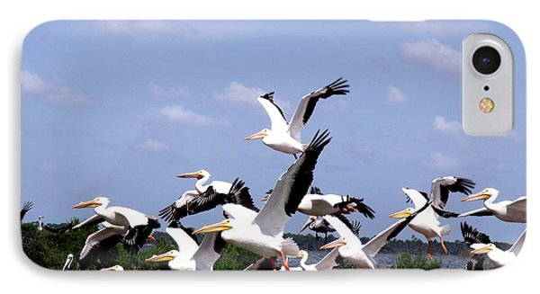 Snowbirds Heading South IPhone Case