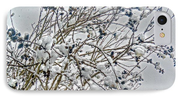 Snowcovered Bush IPhone Case by Mikki Cucuzzo