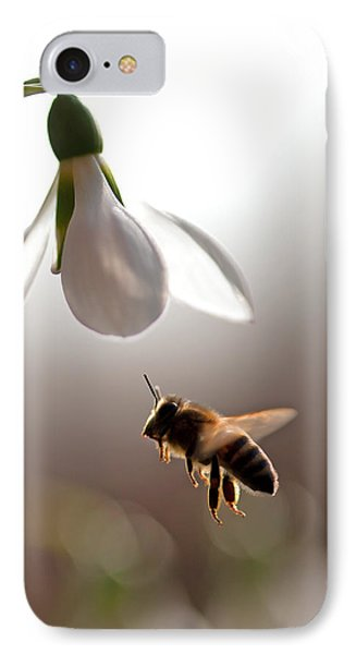 Snowdrops And The Bee IPhone Case by Torbjorn Swenelius