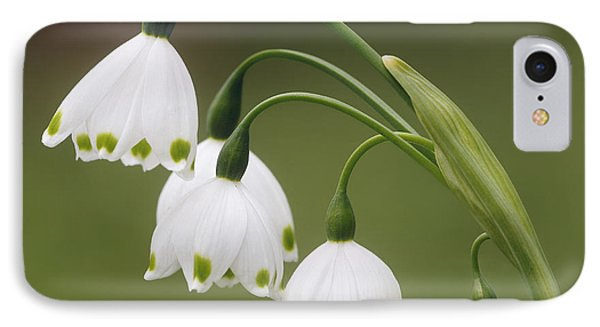 Snowdrops IPhone Case by Jaki Miller