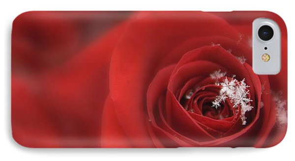 Snowflakes On A Rose IPhone Case by Lori Grimmett