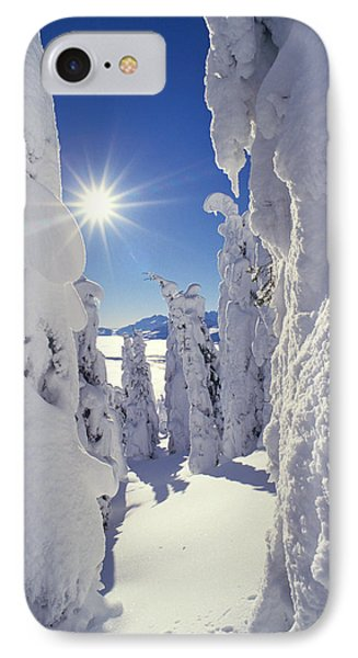 Snowscape Snow Covered Trees And Bright Sun IPhone Case