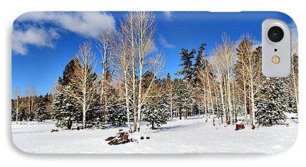 Snowy Aspen Grove IPhone Case by Donna Greene