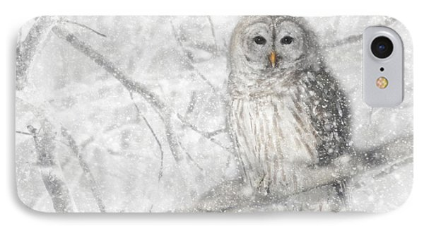 Snowy Barred Owl IPhone Case by Lori Deiter