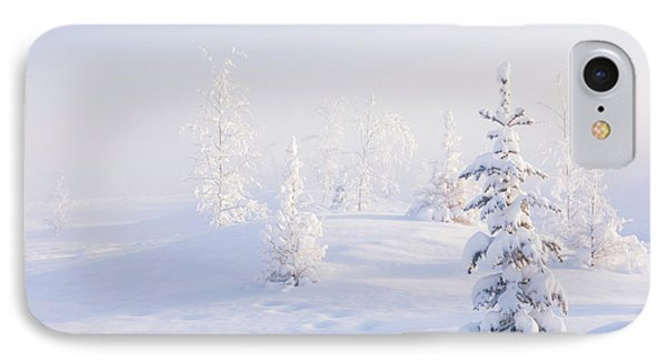Snowy Birch And Evergreen Trees In An IPhone Case by Kevin Smith