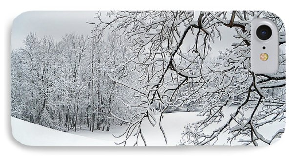 Snowy Branches IPhone Case by Aimee L Maher Photography and Art Visit ALMGallerydotcom