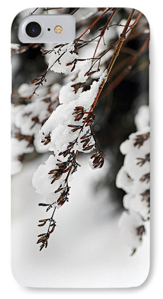 Snowy Branches IPhone Case by Elena Elisseeva