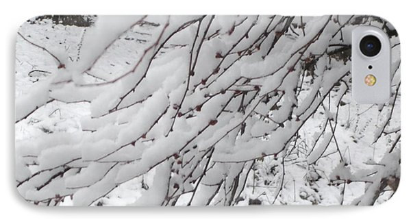 Snowy Branches IPhone Case by Donna Dixon