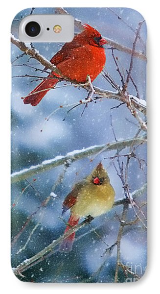 Snowy Cardinal Pair IPhone Case by Clare VanderVeen