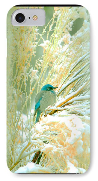 Snowy Chamisa In High Mountains IPhone Case by Susanne Still