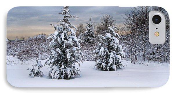 Snowy Dawn Phone Case by Deborah  Bowie