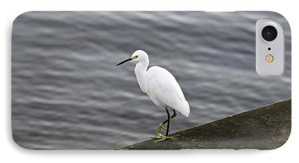 IPhone Case featuring the photograph Snowy Egret by Anthony Baatz