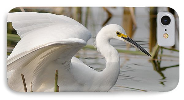 IPhone Case featuring the photograph Snowy Egret by Doug Herr