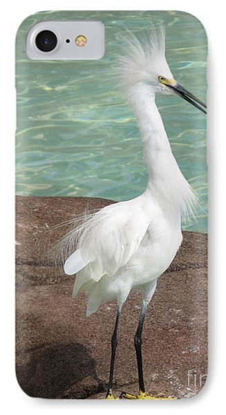 Snowy Egret IPhone Case by DejaVu Designs