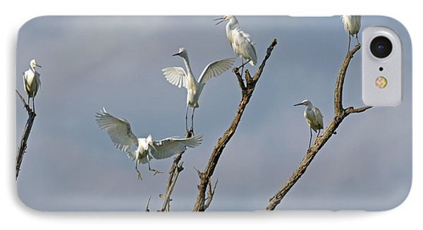 IPhone Case featuring the photograph Snowy Egret Inn by Olivia Hardwicke