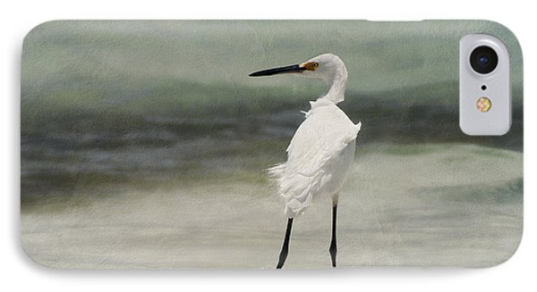 Snowy Egret IPhone Case by John Edwards