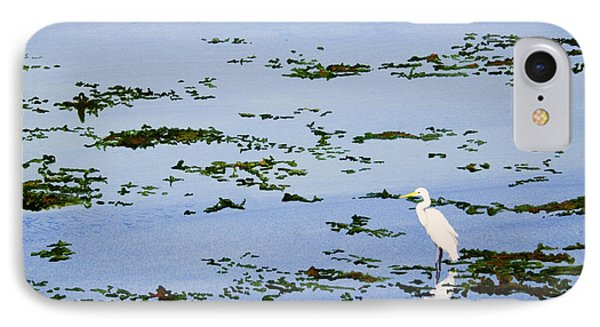Snowy Egret IPhone Case by Mike Robles