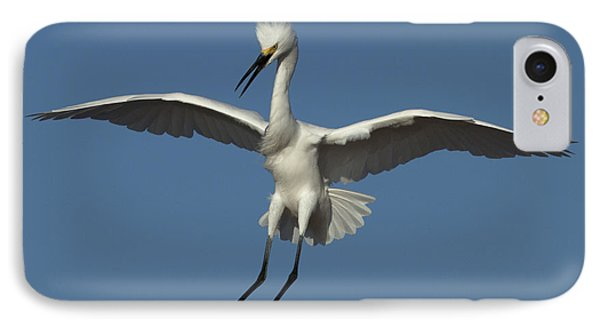 IPhone Case featuring the photograph Snowy Egret Photo by Meg Rousher