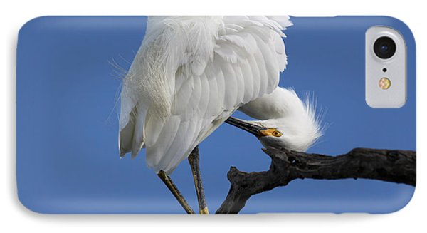 IPhone Case featuring the photograph Snowy Egret Photograph by Meg Rousher