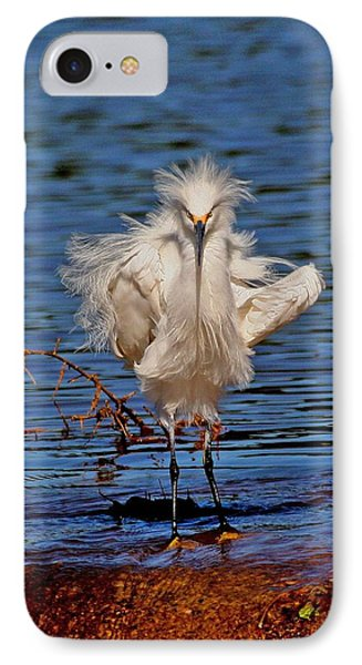 Snowy Egret With Yellow Feet IPhone Case by Tom Janca