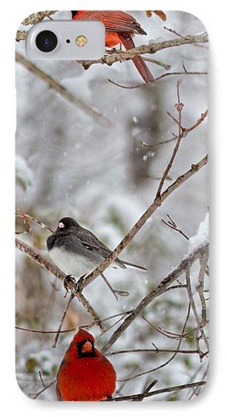 Snowy Grace Cardinals IPhone Case