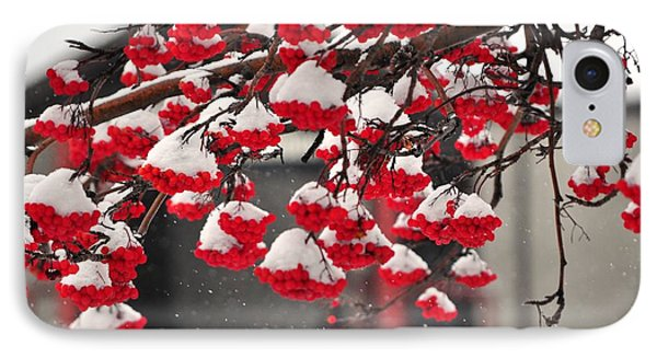 IPhone Case featuring the photograph Snowy Mountain Ash Berries by Fran Riley