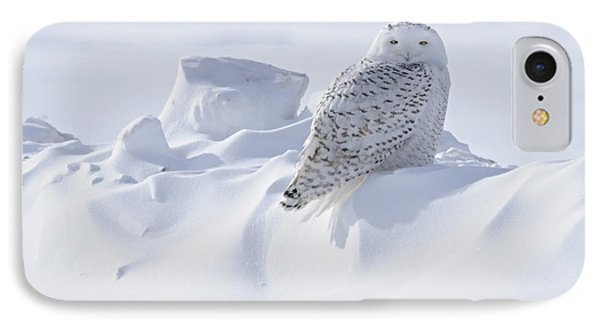 Snowy On A Snowbank IPhone Case