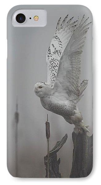 Snowy Owl Blastoff IPhone Case by Daniel Behm