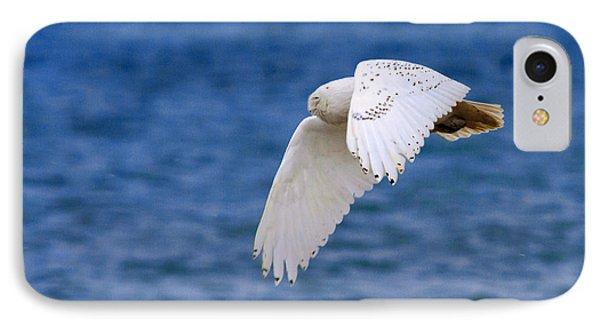 Snowy Owl In Flight Phone Case by Aaron Smith