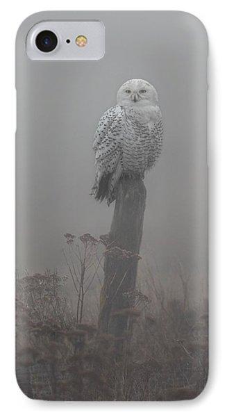 Snowy Owl  In The Mist IPhone Case by Daniel Behm