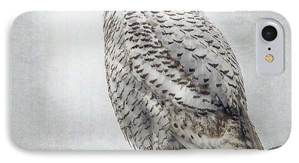 IPhone Case featuring the photograph Snowy Owl In The Rain by Constantine Gregory