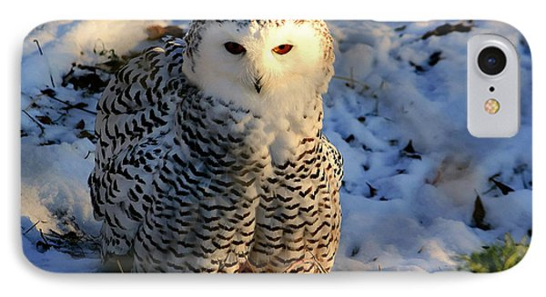 IPhone Case featuring the photograph Snowy Owl by Larry Trupp