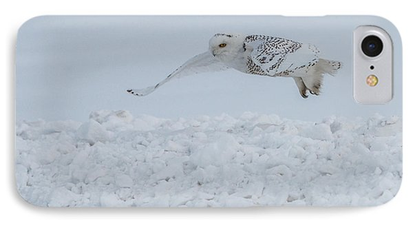 IPhone Case featuring the photograph Snowy Owl #1/3 by Patti Deters