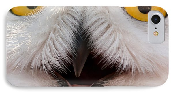 Snowy Owl Up Close And Personal Phone Case by Laura Duhaime