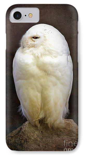 Snowy Owl Vintage  IPhone Case by Jane Rix