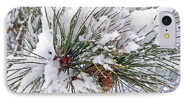 Snowy Pine Phone Case by Aimee L Maher Photography and Art Visit ALMGallerydotcom