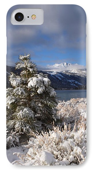 IPhone Case featuring the photograph Snowy Pine  by Duncan Selby