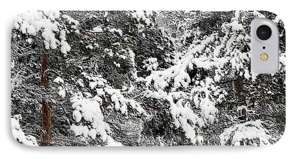 Snowy Pines Phone Case by Kathleen Struckle